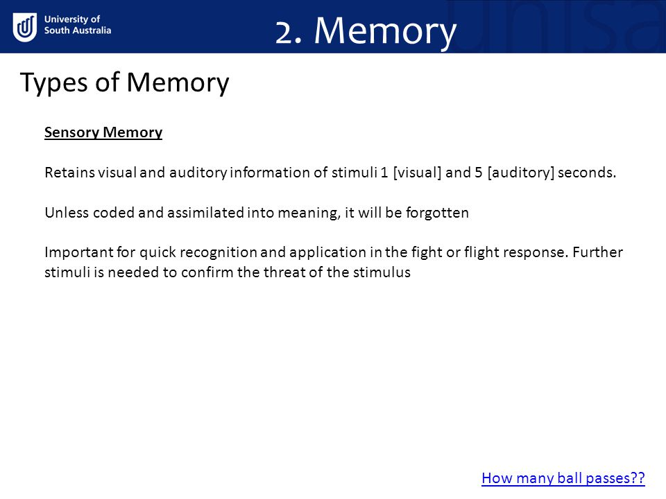 2. Memory Types of Memory Sensory Memory Retains visual and auditory information of stimuli 1 [visual] and 5 [auditory] seconds. Unless coded and assi
