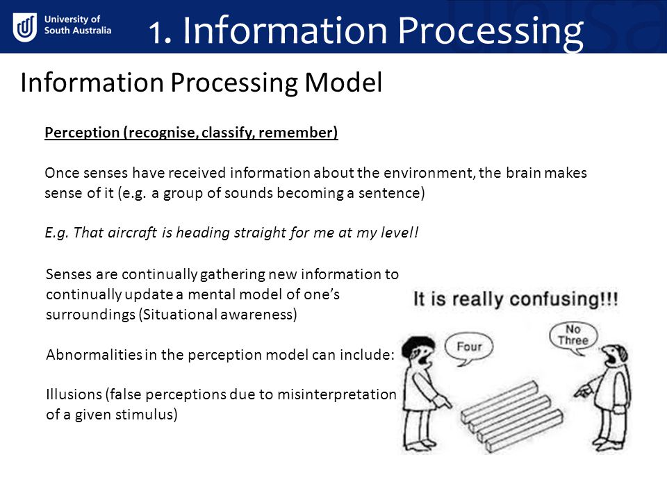 1. Information Processing Information Processing Model Perception (recognise, classify, remember) Once senses have received information about the envi