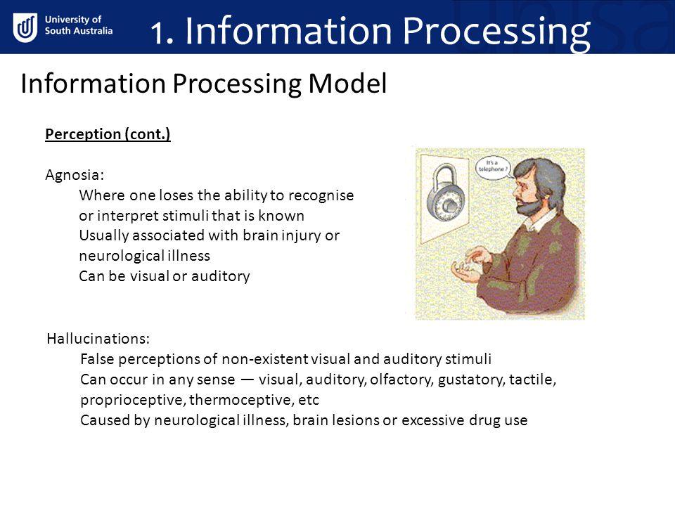 1. Information Processing Information Processing Model Perception (cont.) Agnosia: Where one loses the ability to recognise or interpret stimuli that
