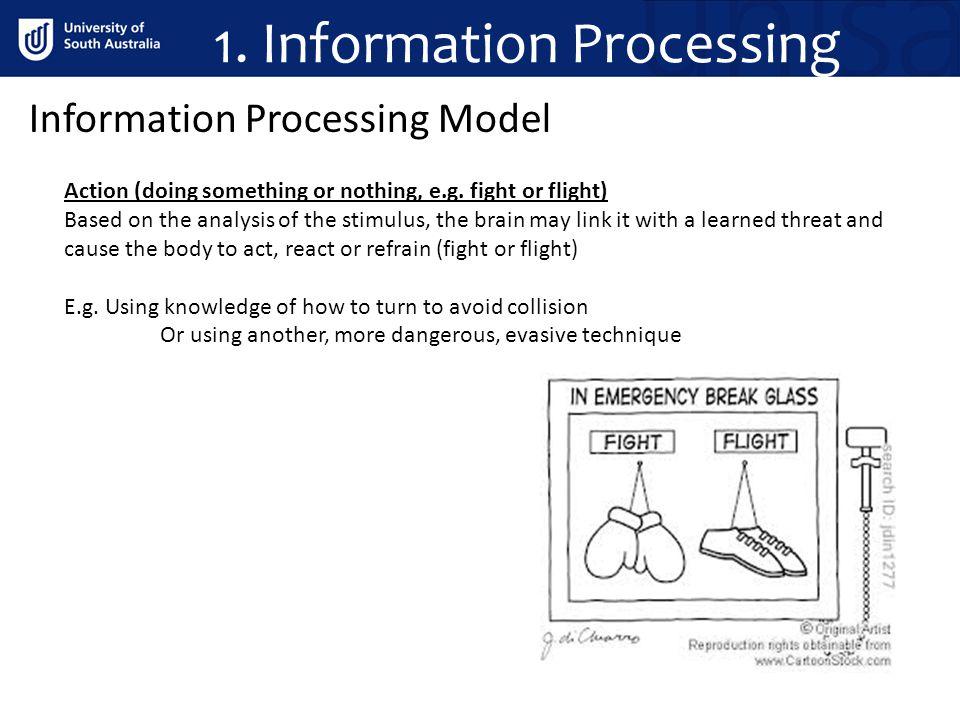 1. Information Processing Information Processing Model Action (doing something or nothing, e.g.