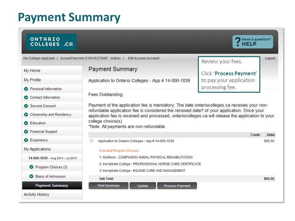 Payment Summary Review your fees. Click Process Payment to pay your application processing fee.