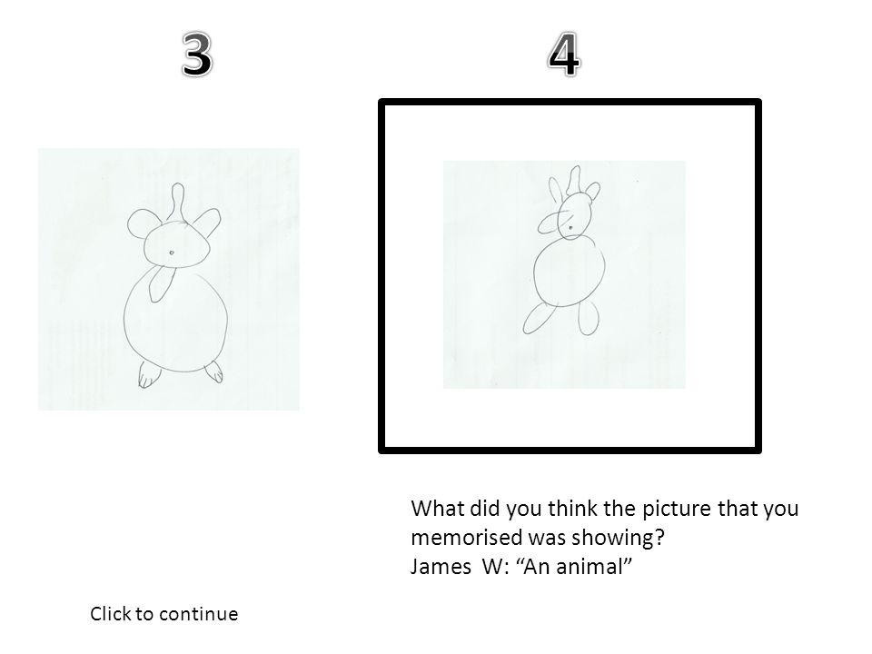 What did you think the picture that you memorised was showing James W: An animal Click to continue