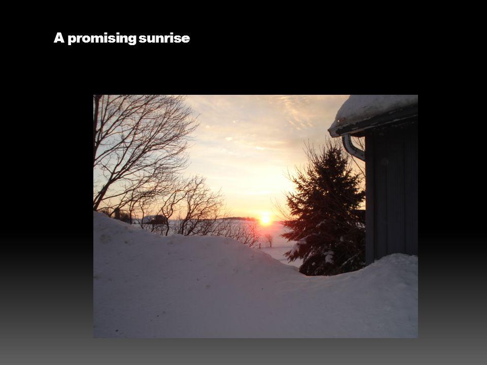 A promising sunrise