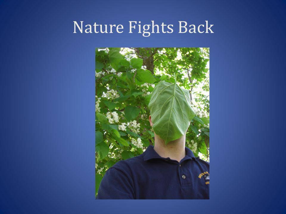 Nature Fights Back