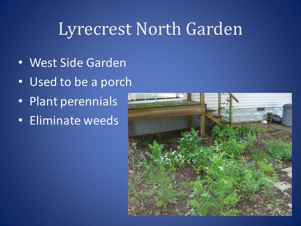 Lyrecrest North Garden West Side Garden Used to be a porch Plant perennials Eliminate weeds