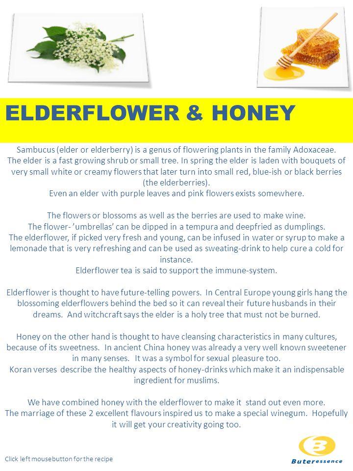 Sambucus (elder or elderberry) is a genus of flowering plants in the family Adoxaceae.