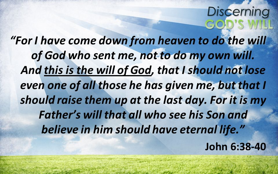 Discerning For I have come down from heaven to do the will of God who sent me, not to do my own will.