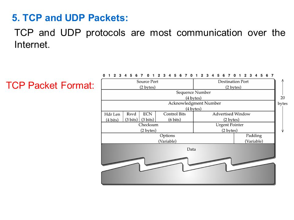 5. TCP and UDP Packets: TCP and UDP protocols are most communication over the Internet. TCP Packet Format: