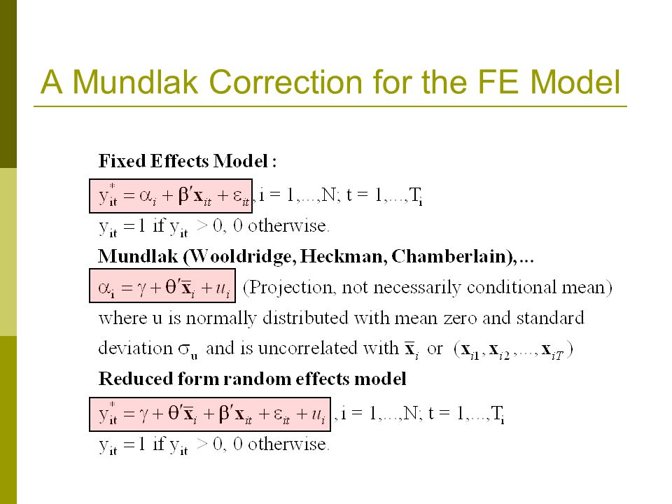 A Mundlak Correction for the FE Model