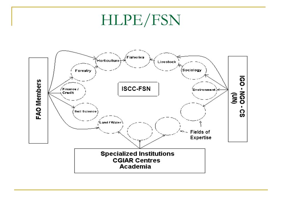 HLPE/FSN ISCC-FSN Fields of Expertise