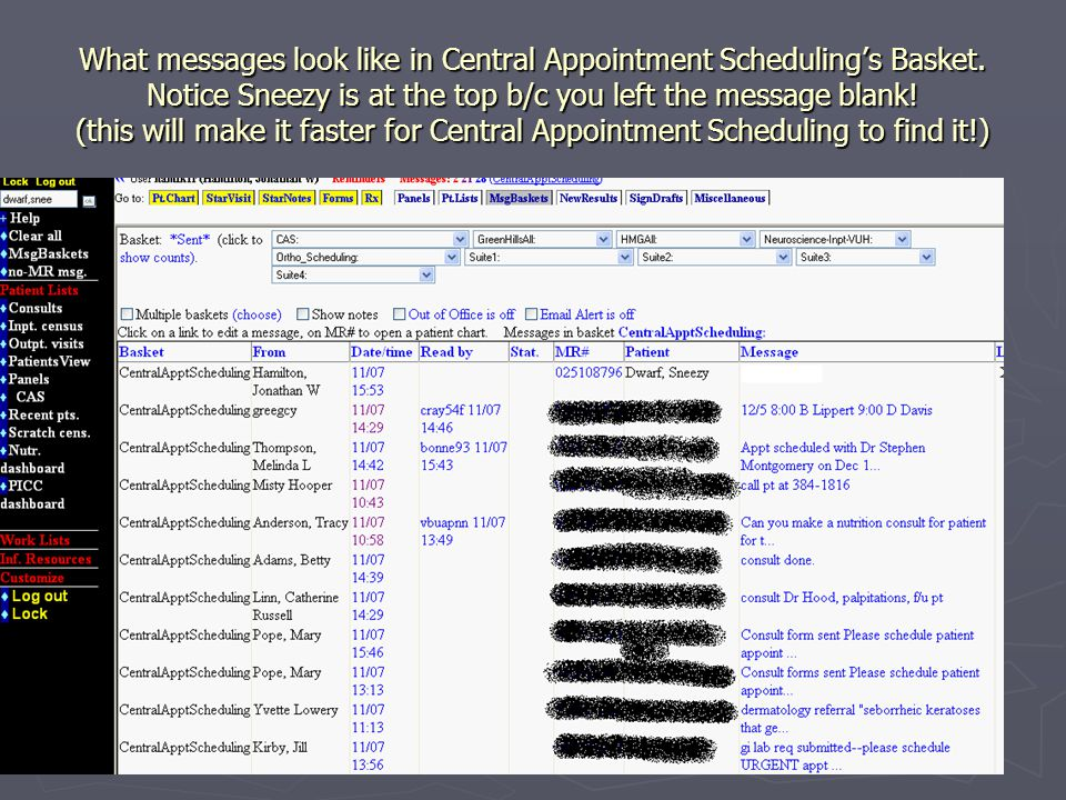 What messages look like in Central Appointment Schedulings Basket.