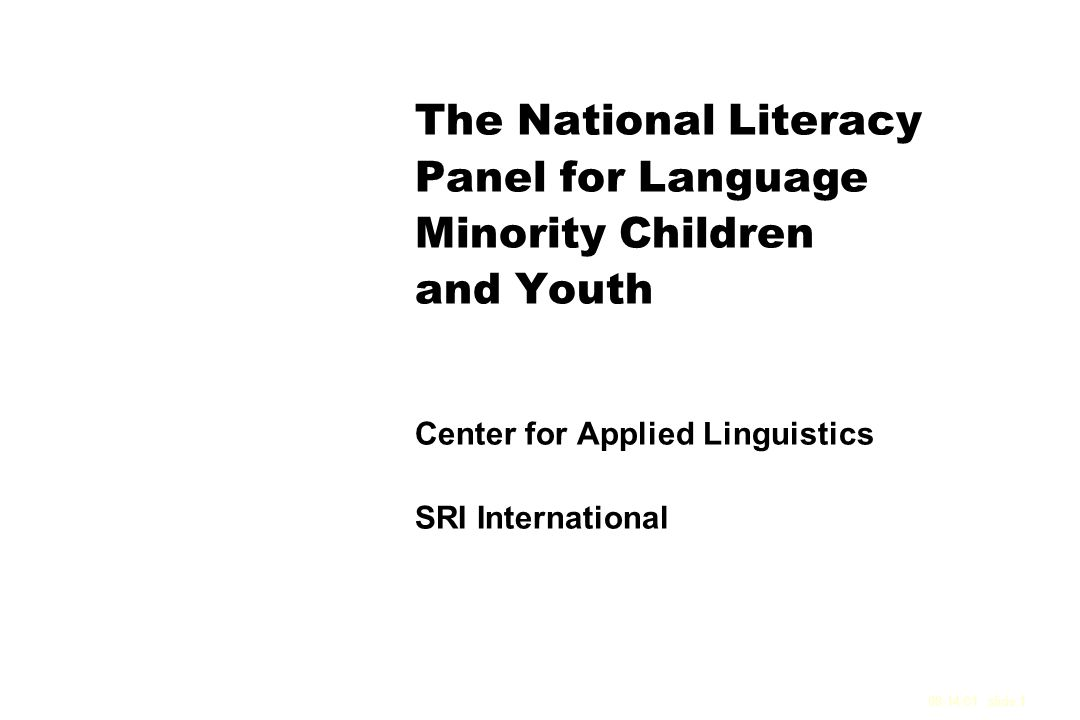 A National Literacy Panel to Conduct a Comprehensive Evidence-Based Review of the Research Literature on the Development of Literacy Among Language Minority Children and Youth Mission To conduct a comprehensive review of the research literature on the development of literacy among Language Minority Children and Youth