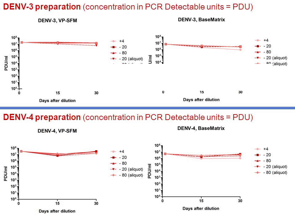 DENV-3 preparation (concentration in PCR Detectable units = PDU) 12 DENV-3 preparation (concentration in PCR Detectable units = PDU) DENV-4 preparation (concentration in PCR Detectable units = PDU)