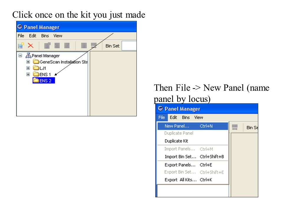 Click once on the kit you just made Then File -> New Panel (name panel by locus)