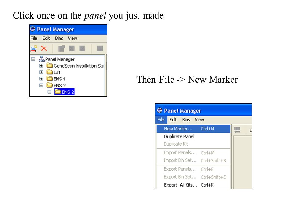 Click once on the panel you just made Then File -> New Marker