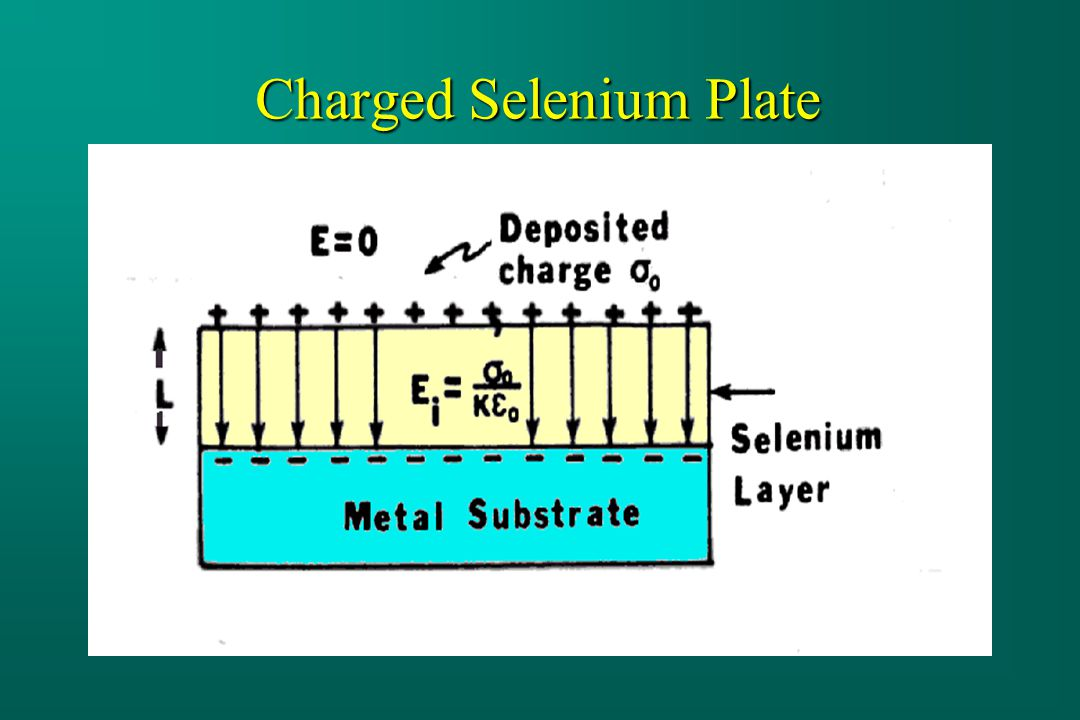 Charged Selenium Plate