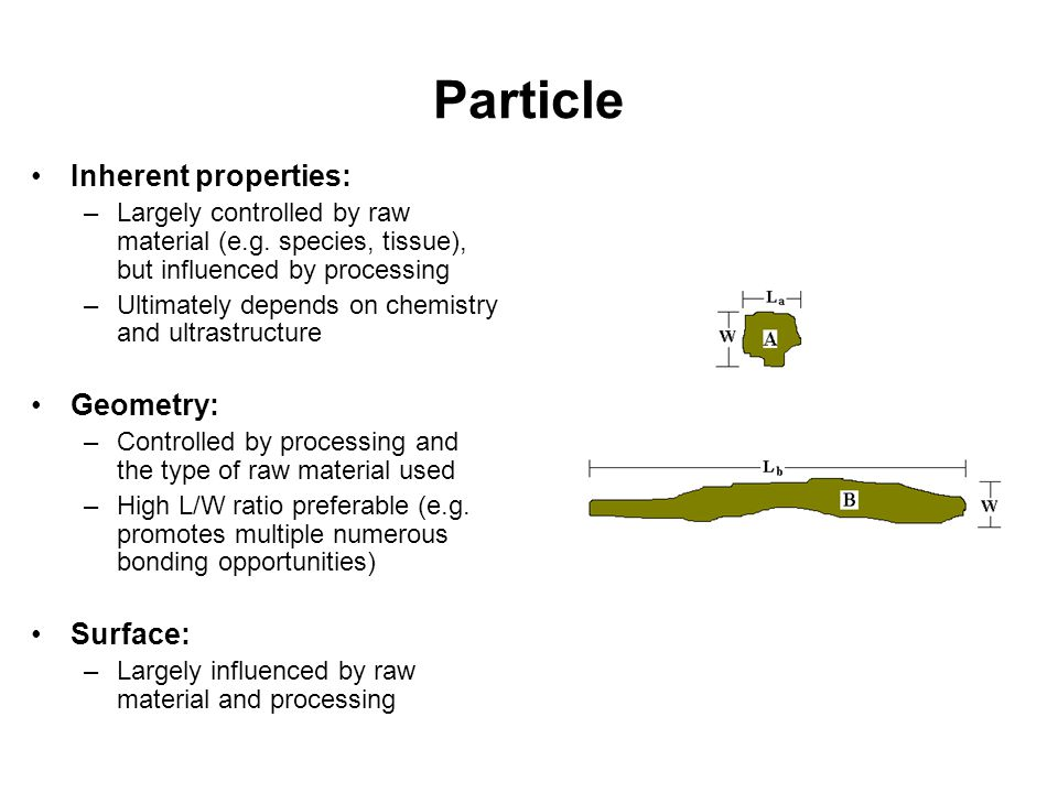 Particle Inherent properties: –Largely controlled by raw material (e.g. species, tissue), but influenced by processing –Ultimately depends on chemistr