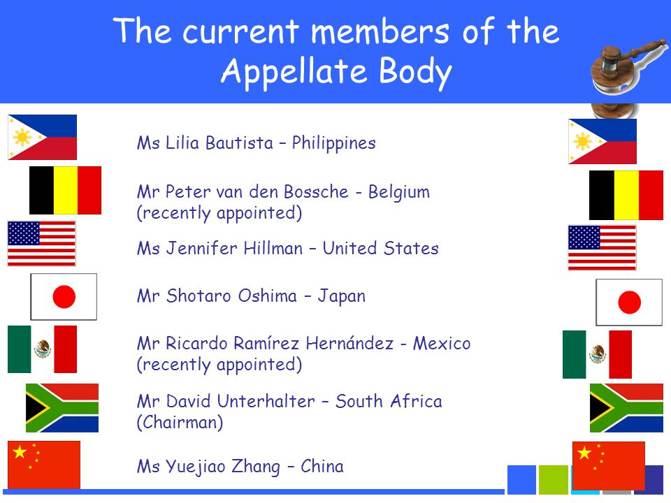 31 The current members of the Appellate Body Ms Lilia Bautista – Philippines Ms Jennifer Hillman – United States Mr Shotaro Oshima – Japan Ms Yuejiao