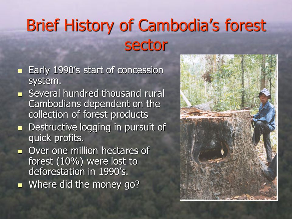 Brief History of Cambodias forest sector Early 1990s start of concession system.