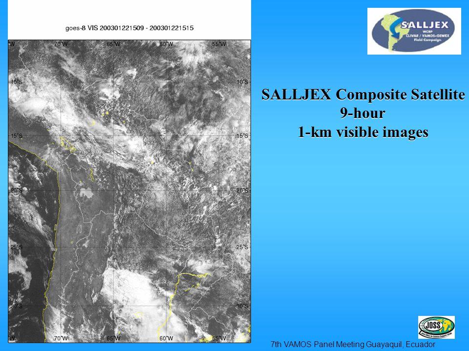 SALLJEX Composite Satellite 9-hour 1-km visible images SALLJEX Composite Satellite 9-hour 1-km visible images 7th VAMOS Panel Meeting Guayaquil, Ecuador