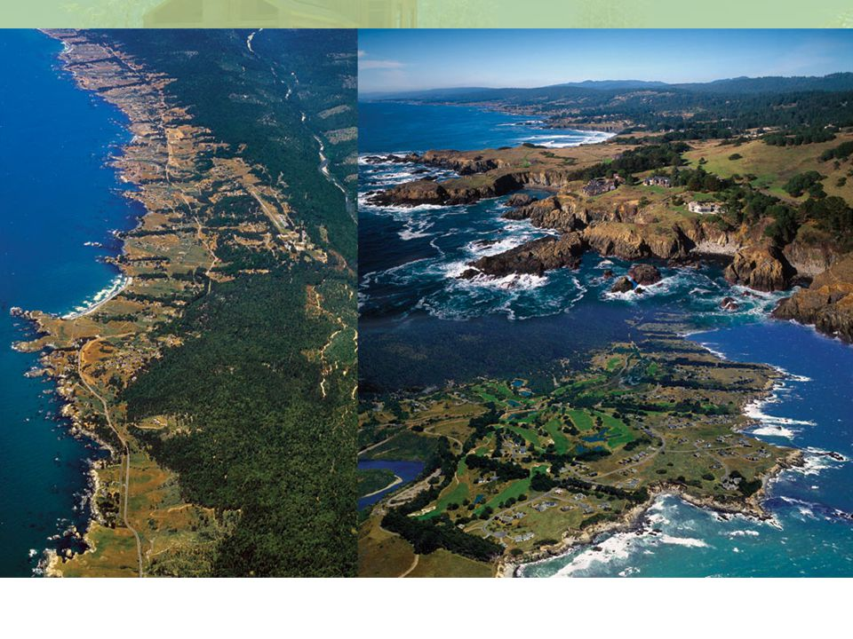IMAGE: Sea Ranch Collage