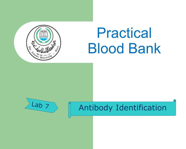Practical Blood Bank Lab 7 Antibody Identification