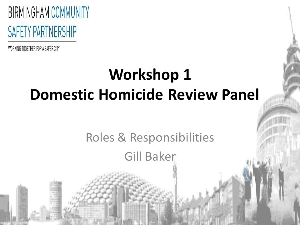 Workshop 1 Domestic Homicide Review Panel Roles & Responsibilities Gill Baker
