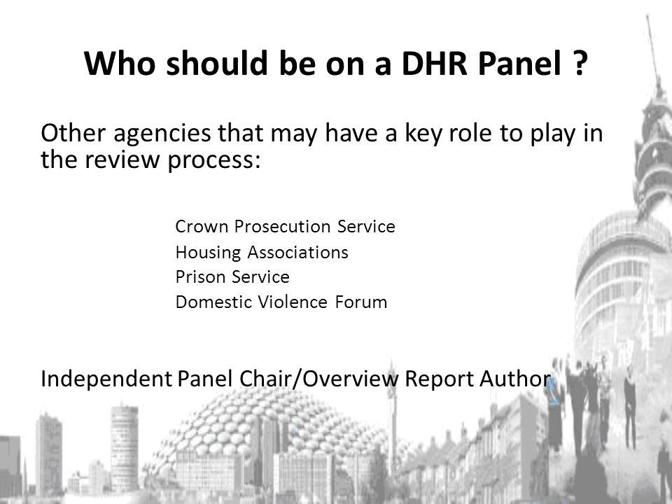 Who should be on a DHR Panel .