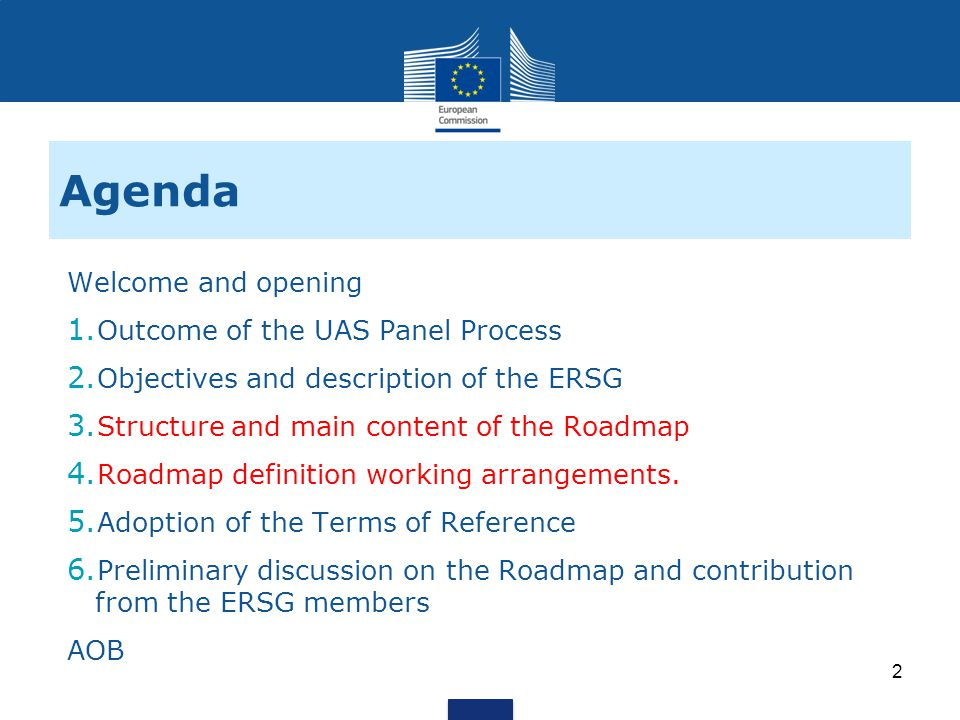 2 2 Objectives and description of the ERSG 3 1 1 Outcome of the UAS Panel Process 3 3 Structure and main content of the Roadmap 4 4 Roadmap definition working arrangements.