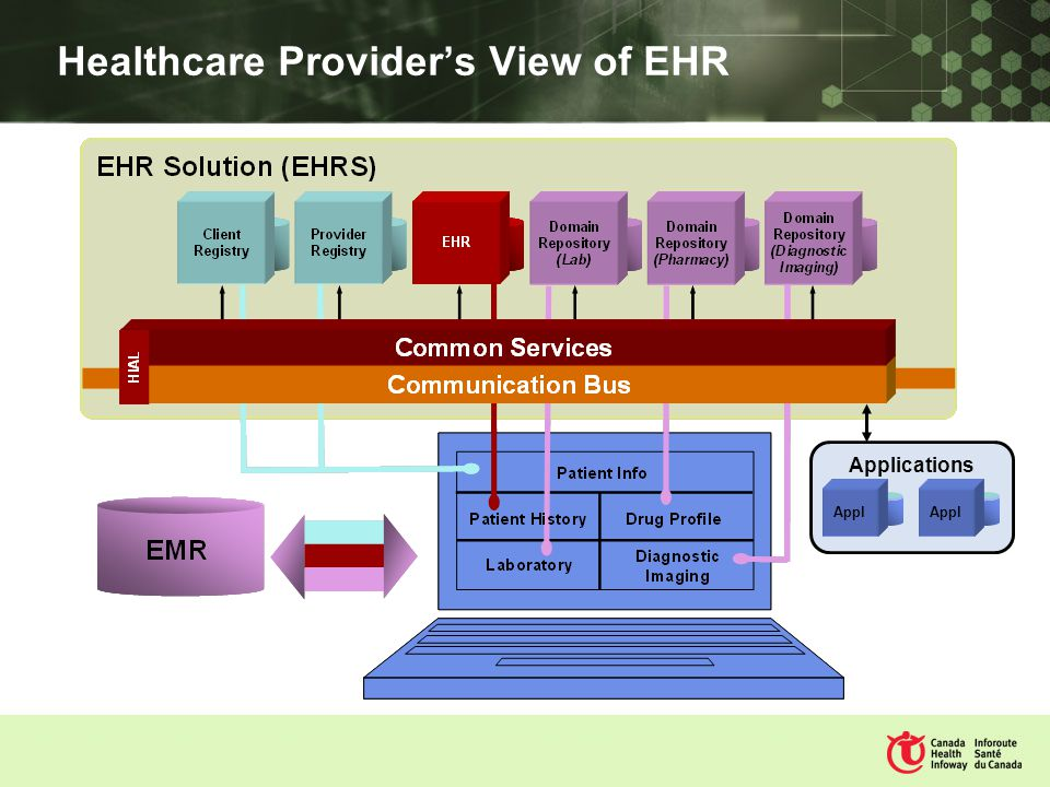 Healthcare Providers View of EHR Applications Appl