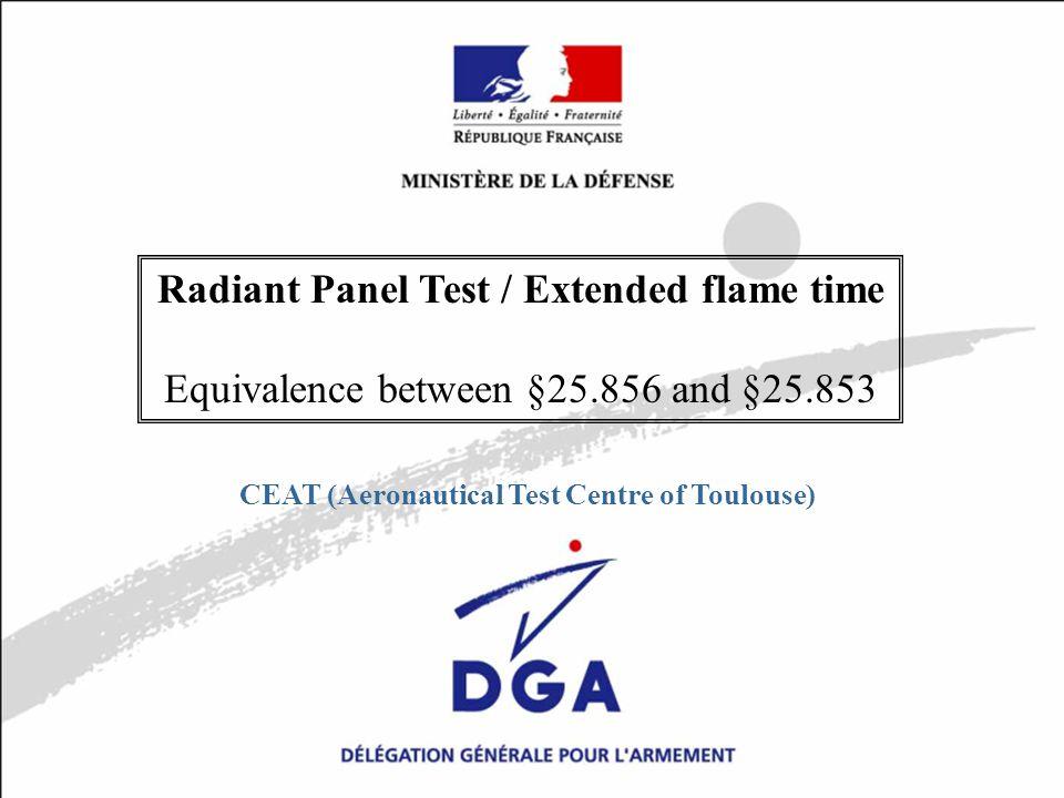 DE/CEAT Atlanta 10/19/2005Diapositive N°1 / 13 MINISTÈRE DE LA DÉFENSE Radiant Panel Test / Extended flame time Equivalence between §25.856 and §25.853 CEAT (Aeronautical Test Centre of Toulouse)
