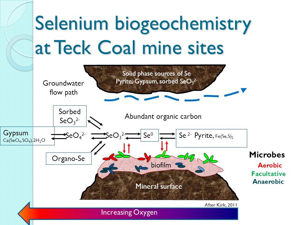 What is selenium (contd).