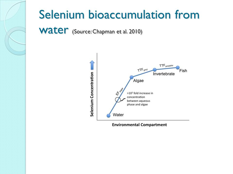 Selenium bioaccumulation from water (Source: Chapman et al. 2010)