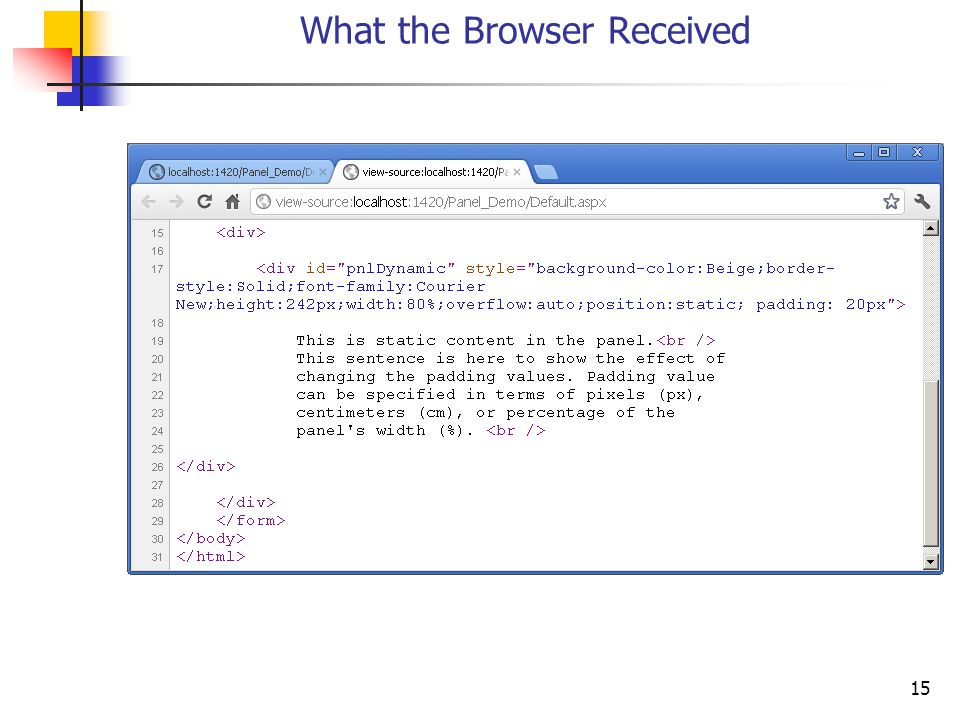 15 What the Browser Received
