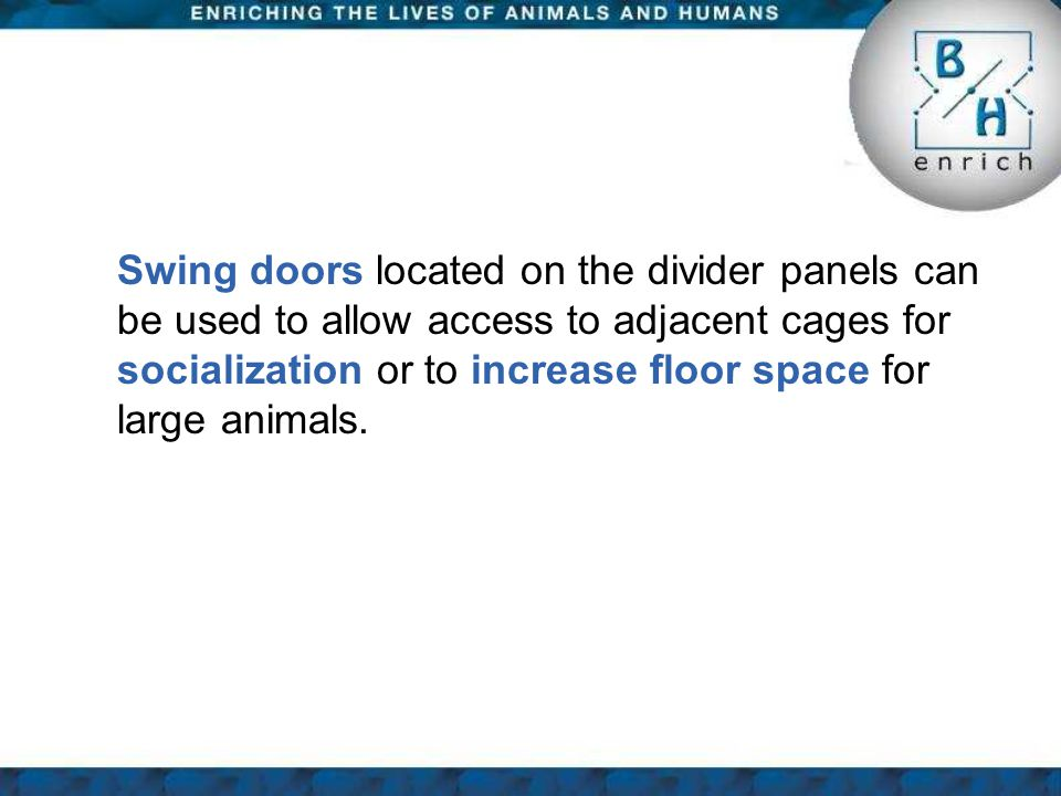 Swing doors located on the divider panels can be used to allow access to adjacent cages for socialization or to increase floor space for large animals.