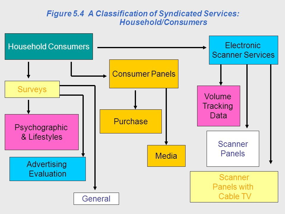 Household Consumers Surveys Consumer Panels Electronic Scanner Services Psychographic & Lifestyles General Advertising Evaluation Media Purchase Scann