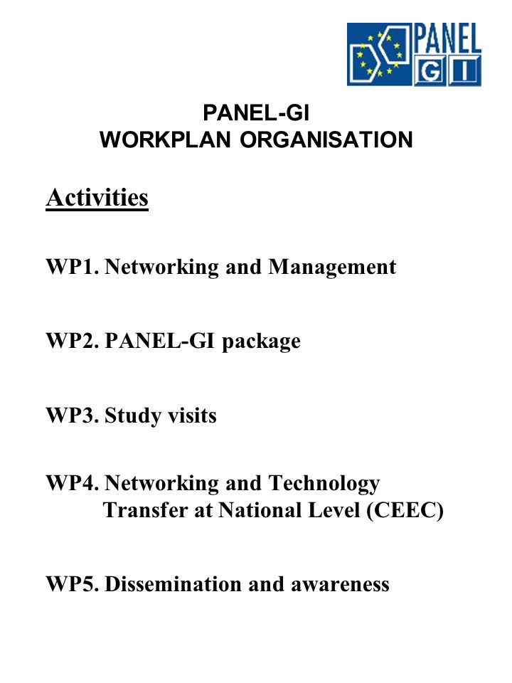 PANEL-GI DISSEMINATION AND AWARENESS Target European level National level Activities PANEL-GI workshops PANEL-GI WWW pages Promotional material & White Paper PANEL-GI Package publication