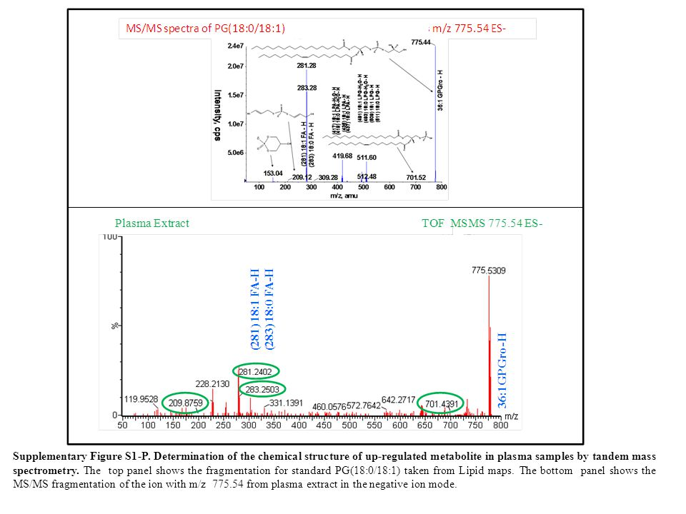 Supplementary Figure S1-P. Determination of the chemical structure of up-regulated metabolite in plasma samples by tandem mass spectrometry. The top p