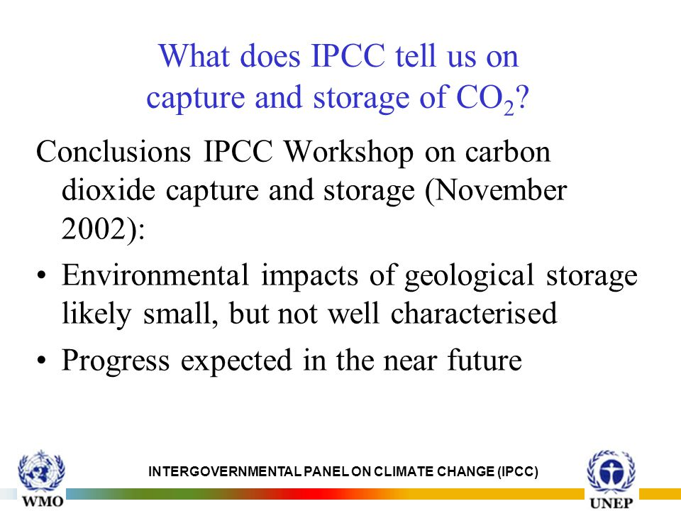 INTERGOVERNMENTAL PANEL ON CLIMATE CHANGE (IPCC) What does IPCC tell us on capture and storage of CO 2 .