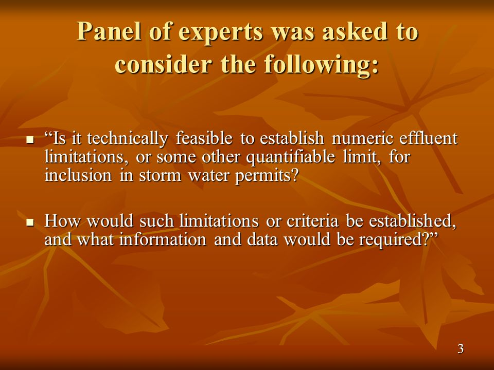 Panel of experts was asked to consider the following: Is it technically feasible to establish numeric effluent limitations, or some other quantifiable limit, for inclusion in storm water permits.