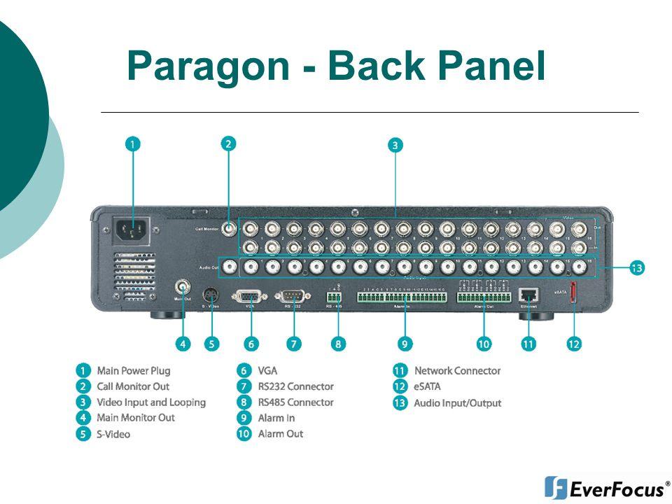 Paragon - Back Panel