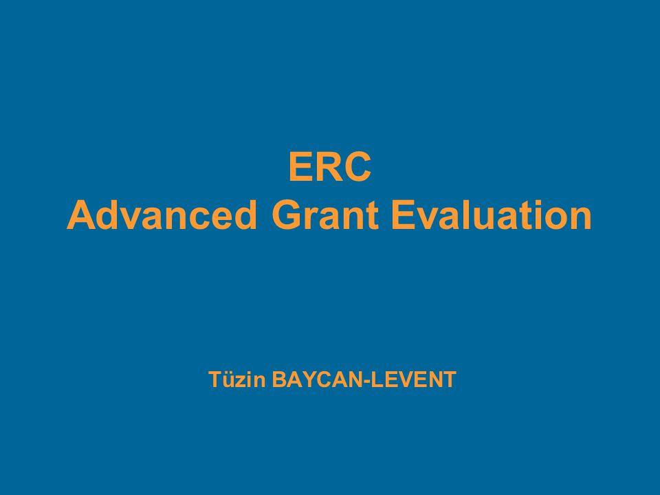 Tüzin BAYCAN-LEVENT ERC Advanced Grant Evaluation