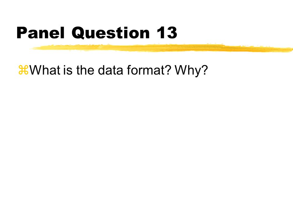 Panel Question 13 zWhat is the data format? Why?