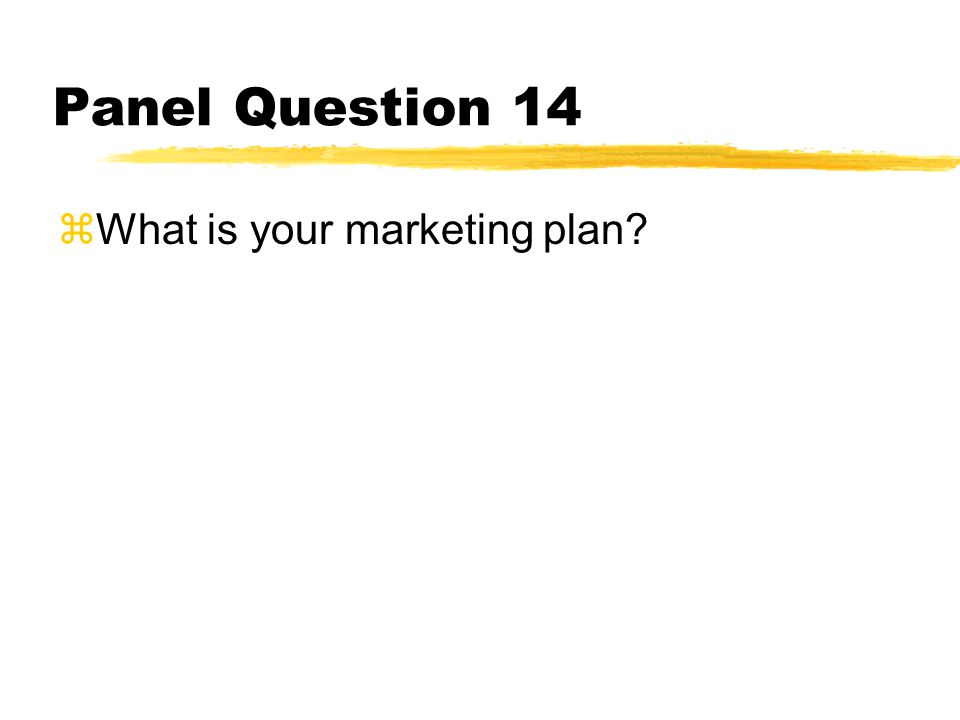Panel Question 14 zWhat is your marketing plan?