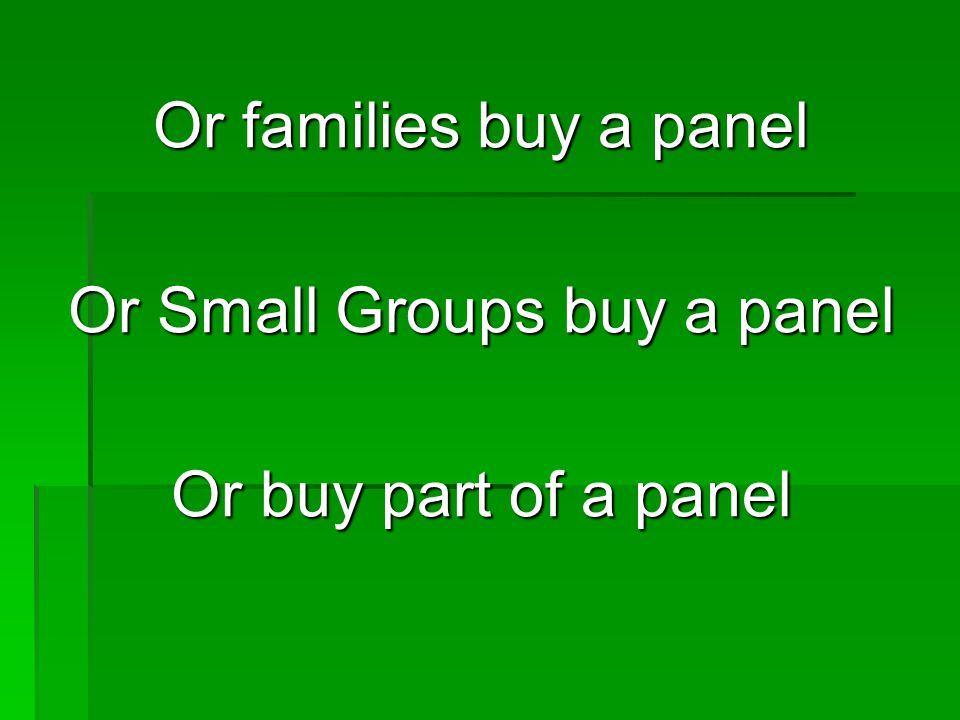Or families buy a panel Or Small Groups buy a panel Or buy part of a panel
