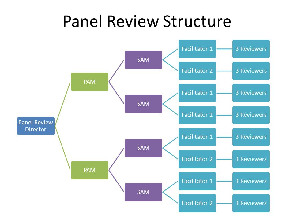Panel Review Director PAMSAMFacilitator 13 ReviewersFacilitator 23 ReviewersSAMFacilitator 13 ReviewersFacilitator 23 ReviewersPAMSAMFacilitator 13 ReviewersFacilitator 23 ReviewersSAMFacilitator 13 ReviewersFacilitator 23 Reviewers Panel Review Structure