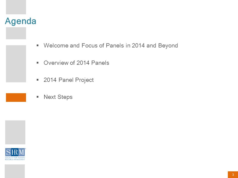 3 Agenda Welcome and Focus of Panels in 2014 and Beyond Overview of 2014 Panels 2014 Panel Project Next Steps