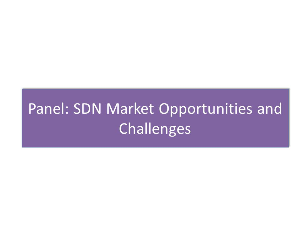 Panel: SDN Market Opportunities and Challenges