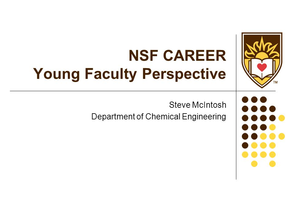 NSF CAREER Young Faculty Perspective Steve McIntosh Department of Chemical Engineering