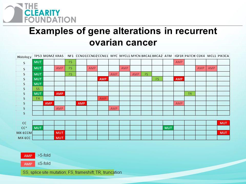 AMP >5-fold 5-fold SS, splice site mutation; FS, frameshift; TR, truncation Examples of gene alterations in recurrent ovarian cancer